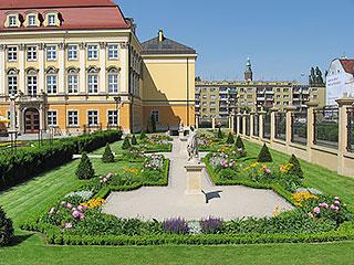 Pałac Królewski (Pałac Spätgenów)