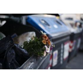 Utylizacja śmieci Edan usługi asenizacyjne