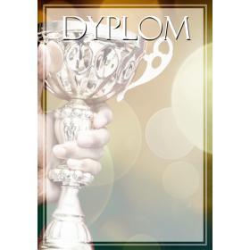 Dyplom PUCHAR DYP122